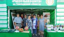 филиал «Россельхозцентра» по Тамбовской области принял участие в праздновании юбилея Жердевского района – 90-летия.